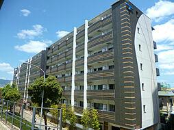 兵庫県西宮市甲子園高潮町の賃貸マンションの外観