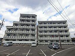 ルート南向 B棟[4階]の外観