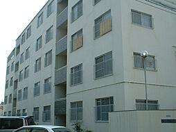 ハイツ伏原[5階]の外観