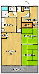 千葉県船橋市湊町3丁目の賃貸マンションの間取り