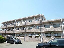 静岡県磐田市明ケ島原の賃貸マンションの外観