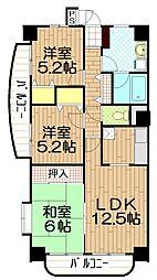 埼玉県朝霞市朝志ケ丘1丁目の賃貸マンションの間取り