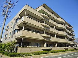 静岡県浜松市中区中島2丁目の賃貸マンションの外観