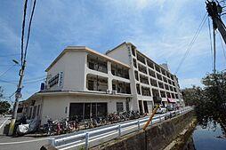 兵庫県西宮市甲子園浦風町の賃貸マンションの外観