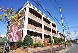 プラムガーデン[3階]の外観