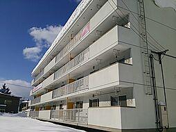 JR函館本線 旭川駅 バス25分 春光小学校前下車 徒歩1分の賃貸アパート