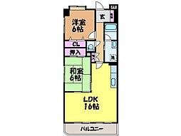 愛媛県松山市余戸東1丁目の賃貸マンションの間取り