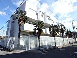 セレストコート浜寺[3階]の外観