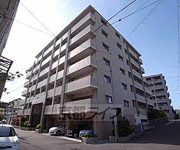 京都府京都市左京区田中東高原町の賃貸マンションの外観