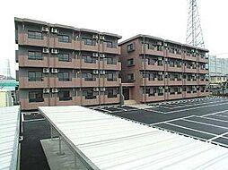 静岡県富士宮市舞々木町の賃貸マンションの外観