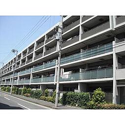 神奈川県海老名市河原口5丁目の賃貸マンションの外観