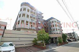 福岡県糟屋郡志免町別府北1丁目の賃貸マンションの外観
