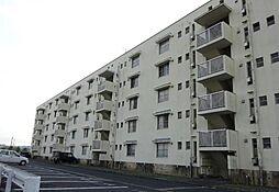 岡山県津山市高野本郷の賃貸マンションの外観