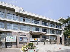 武蔵村山市立第三小学校 距離900m