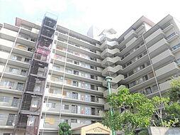 外観(10階建てのRC造のマンションです)