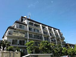 東京都中野区新井2丁目の賃貸マンションの外観