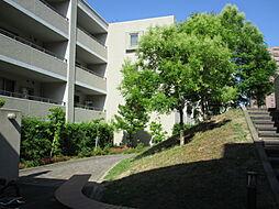 敷地の中央にあり、豊かな緑で飾ったセンターガーデン