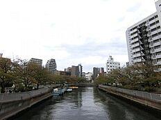 (本物件周辺の環境)本物件近くを流れる川沿いは遊歩道となっており、おススメのお散歩コースといえます。