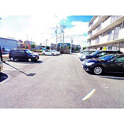 静岡県静岡市清水区七ツ新屋の賃貸マンションの外観