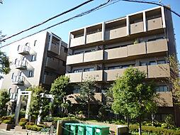 セレナ夙川[301号室]の外観