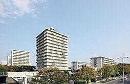 神宮前駅 11.5万円