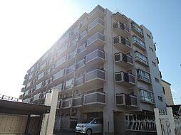 京都府京都市伏見区桃山町弾正島の賃貸マンションの外観