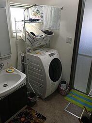 洗面所の手前の廊下にも収納箇所があり、タオルなどの収納も安心です