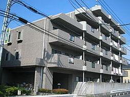 ザ・ステイツヨコハマ[5階]の外観