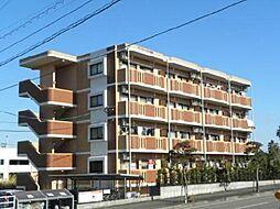 宮崎県宮崎市福島町の賃貸マンションの外観