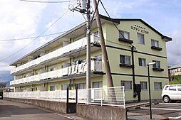ログマンエクセラ[3階]の外観