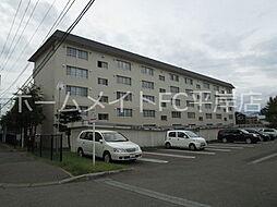 札幌西月寒団地1号棟[3階]の外観