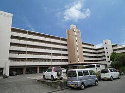 東山本ハイツ[1階]の外観