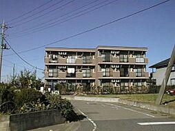 埼玉県加須市花崎北2丁目の賃貸マンションの外観