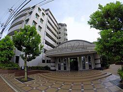エンゼルハイムパークステージ弐番館[3階]の外観