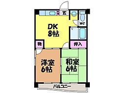 愛媛県松山市小坂2丁目の賃貸マンションの間取り