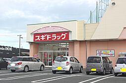 スギドラッグ 神野店(676m)