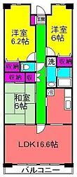 千葉県船橋市薬円台5丁目の賃貸マンションの間取り