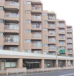 第二松戸グリーンハイツ[4階]の外観