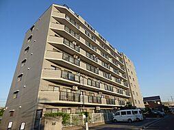 (仮)中浦和マンション[3階]の外観