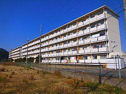 ビレッジハウス五個荘2号棟[4階]の外観