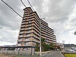 サンライズマンション岩出8 1008号[10階]の外観