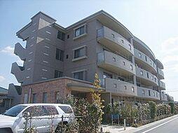 福岡県糟屋郡志免町大字南里の賃貸マンションの外観