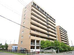 オタルベイサイドシティ7[8階]の外観