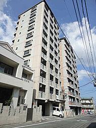 S・K City八幡[11階]の外観