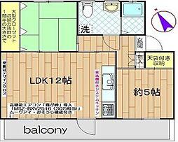 磯辺第一団地[4階]の間取り