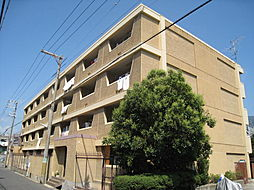 西松本マンション[20D号室]の外観