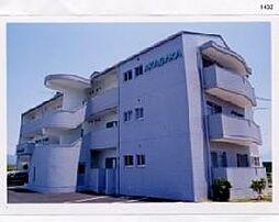 サンライズAKASAKA[103 号室号室]の外観