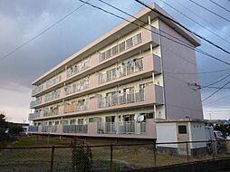 石川ビル第2[305号室]の外観