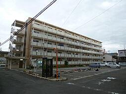 ビレッジハウス城蓮寺7号棟[2階]の外観