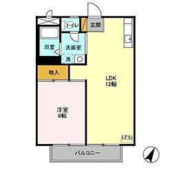 新柏ハウス[205号室号室]の間取り